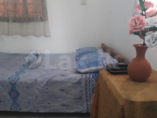Room for Rent (Female individual)