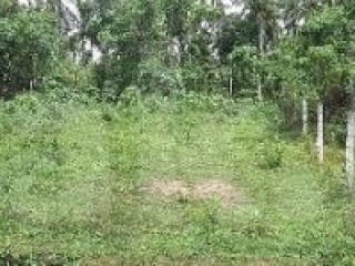 15 perches square land for sale in Panadura Malamulla